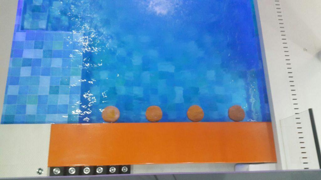 piscina__0007_img-20161119-wa0040